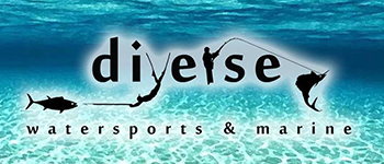 Diverse Water Sports